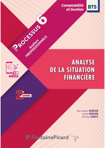 Processus 6 - Analyse de la situation financière